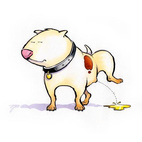 Foto af Satire Bull Terrier Terese Andersen
